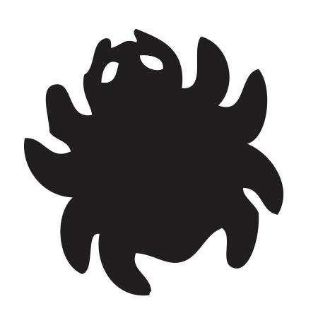 Spider Black Medium 40 Shapes