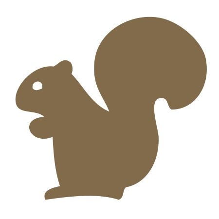 Brown Squirrel Small 40 Shapes