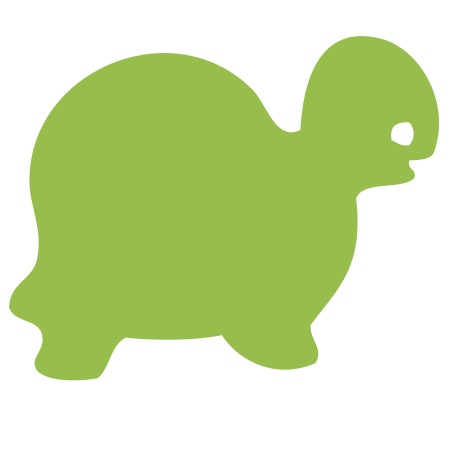 Green Turtle Small 40 Shapes